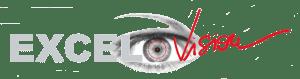 logo_excel_vision
